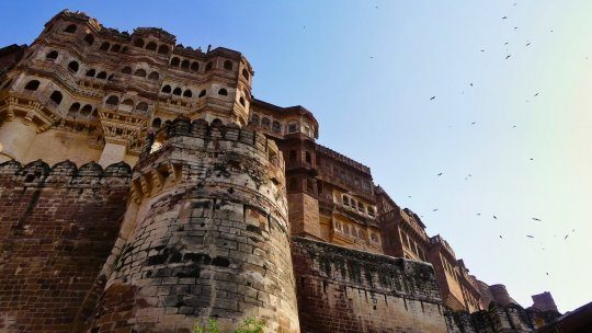 Chandigarh – Les meilleurs endroits touristiques que vous devez visiter immédiatement