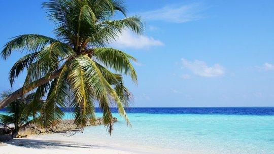 Les cinq principales raisons de visiter les Maldives